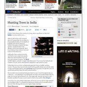 Hunting Trees In India