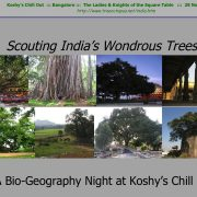 Scouting India's Wondrous Trees