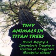 Tiny Animals in Titan Trees