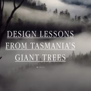 Design Lessons from Tasmanian Giant Trees