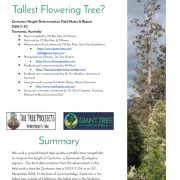 How Tall is The Tallest Flowering Tree? (Report)