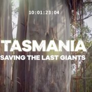 Tasmania – Saving the Last Giants (Documentary Film)