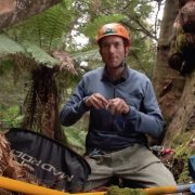 Tasmanian Tree Project Film