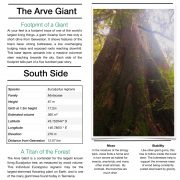The Arve Giant Interpretive Panels
