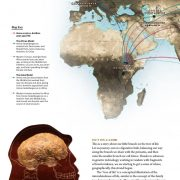 The Tree of Life –  Humans in Asia